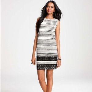 Black and White stripped Lace Ann Taylor Dress